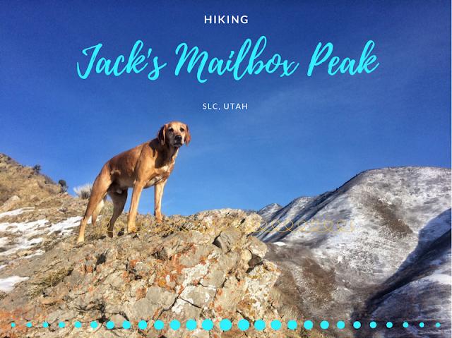 Jack's Mailbox Peak, Jack's Mountain Trail, H Rock open Space