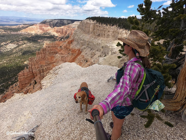 Hiking to Powell Point, Pink Point Utah, highest point in grand staircase escalante national monument, hiking in grand staircase escalante national mo
