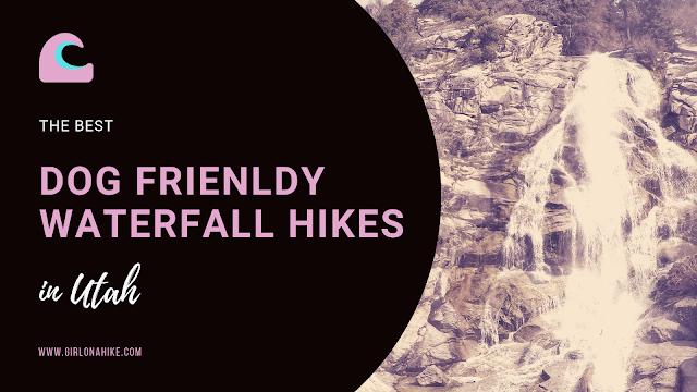 Best Dog Friendly Waterfall hikes in Utah!
