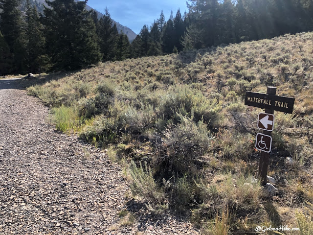 Hiking to Fall Creek Falls, Challis National Forest