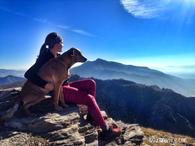 Hiking Lewis Peak, Hiking Eyrie Peak, North Ogden, Utah, Peak Bagging in Utah, Hiking in Utah with Dogs