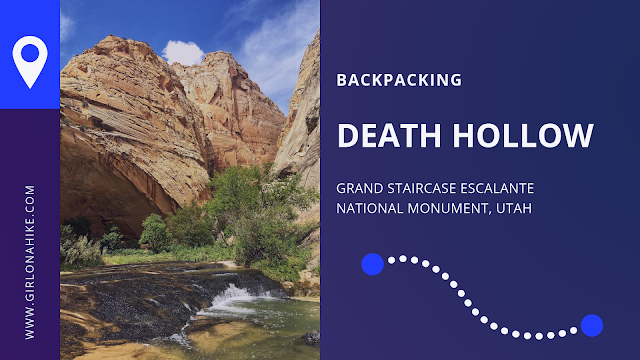 The Ultimate Guide - Dog Friendly Hikes in Escalante, Utah! Hike Death Hollow