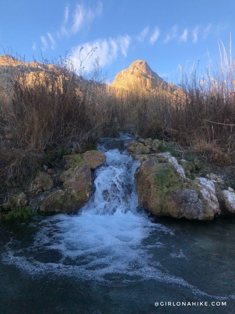 Visiting Gandy Warm Springs, Utah