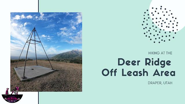 Hiking the Deer Ridge Off Leash Area