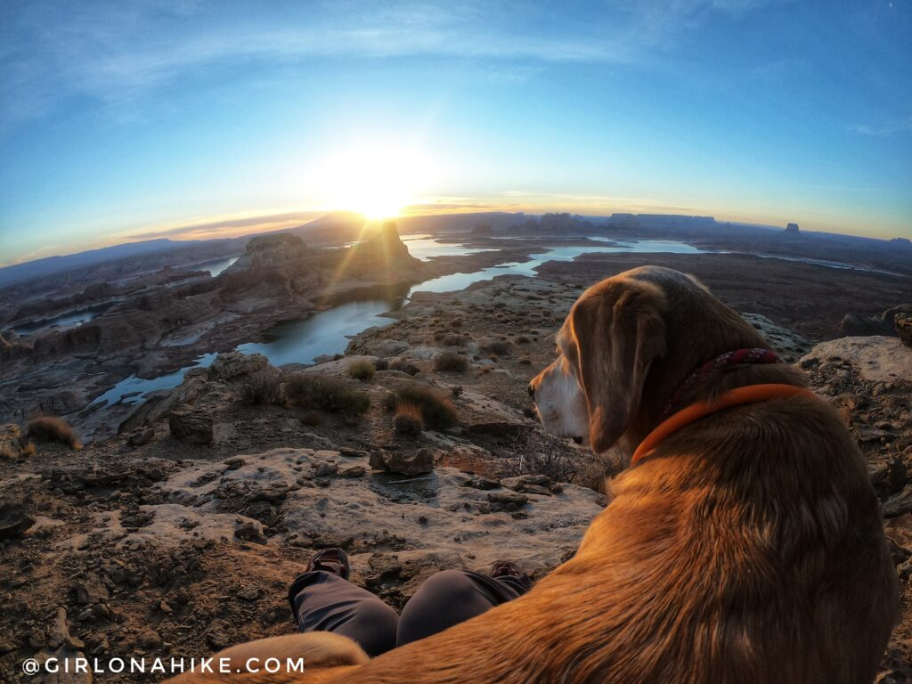 Visiting Alstrom Point, Lake Powell