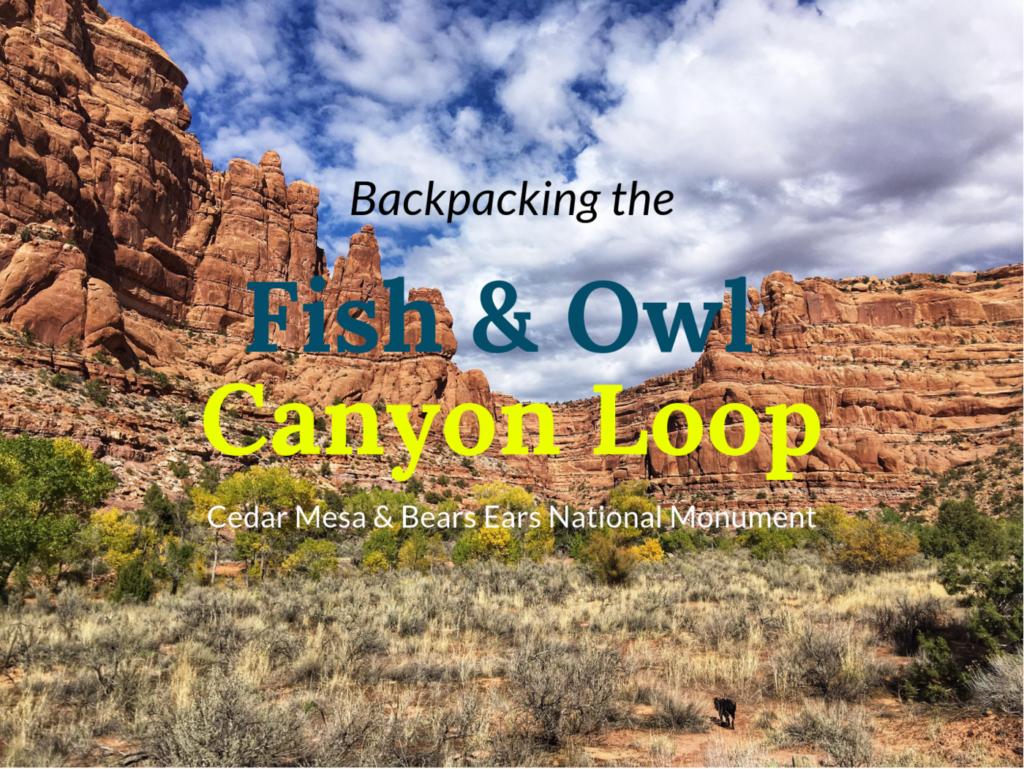 Backpacking Fish & Owl Canyon