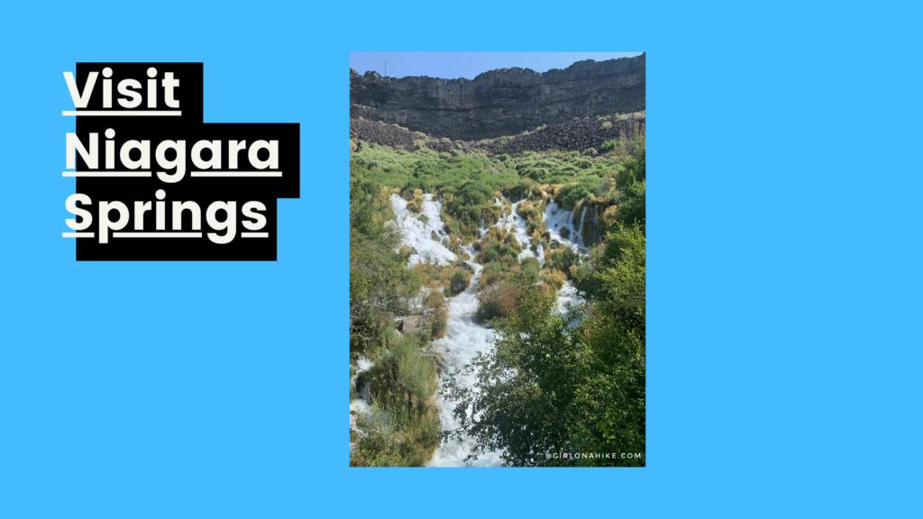 The 6 Best Things to do in Twin Falls, Niagara Springs, Idaho