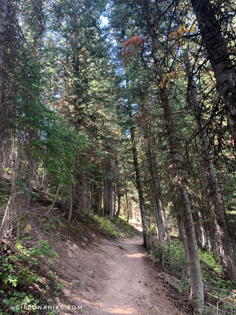 Hiking to the Darby Canyon Wind Caves, Wyoming