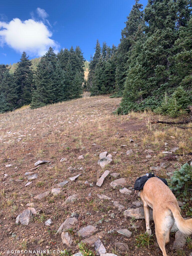 Hiking to South Mountain, LaSal Mountains