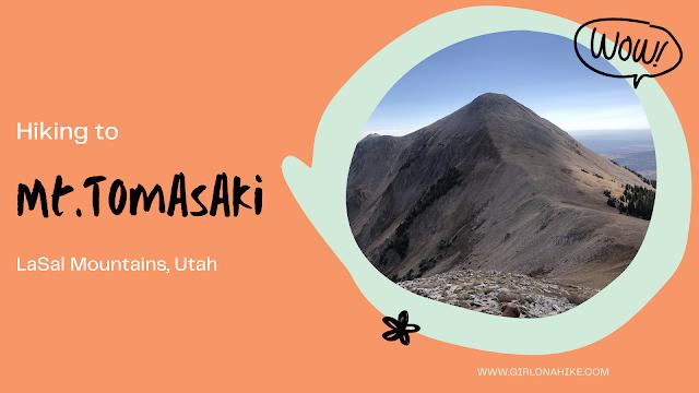 Hiking Mt.Tomasaki, LaSal Mountains